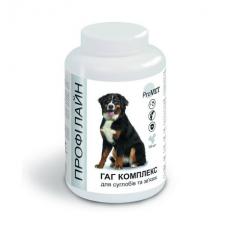 Витаминно-минеральная добавка для собак ProVET Профилайн ГАГ комплекс 100 табл, 123 г (для суставов и связок)