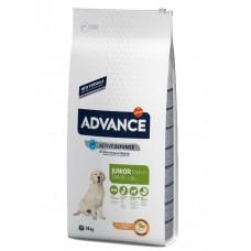 Advance Dog Maxi Junior сухий корм для молодих собак великих порід з куркою 14 кг