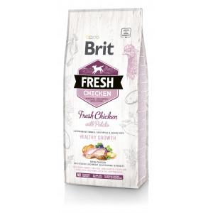 Brit Fresh Chicken / Potato Adult сухий корм для цуценят курка, картопля 12 кг