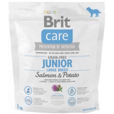 Brit Care GF Junior Large Breed Salmon & Potatoes сухой корм для щенков гигантских пород с лососем и картофелем 1 кг
