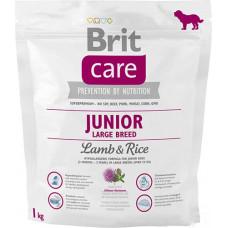Brit Care Junior Large Breed Lamb & riceсухой корм для щенков и молодых собак крупных пород с мясом ягненка и рисом 1 кг