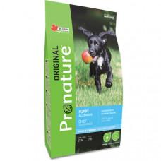 Pronature Original Puppy Chicken Oatmeal сухой корм для щенков всех пород с курицей и овсяной мукой 2,27 кг.