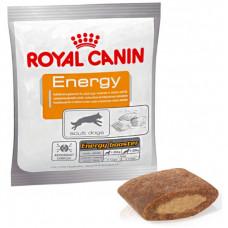 Royal Canin Energy лакомство для активных собак 0,05 кг
