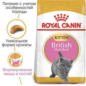 Royal Canin kitten british shorthair для кошенят породи британська короткошерста до 12 місяців 2 кг.