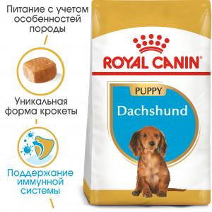 Royal Canin dachshund Junior корм для щенков до 10 месяцев 1,5 кг.
