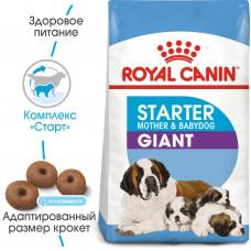 Royal Canin giant starter корм для собак больших пород до 2х мес, беременных и кормящих сук 1 кг.