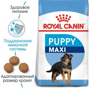 Royal Canin Maxi Puppy сухий корм для цуценят великих до 15 місяців 15 кг.