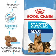 Royal Canin Maxi starter корм для щенков до 2 мес, беременных и кормящих сук 15 кг.