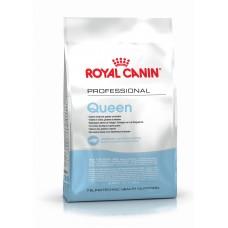 Royal Canin queen корм для кошек при беременности и вскармливания потомства 4 кг.