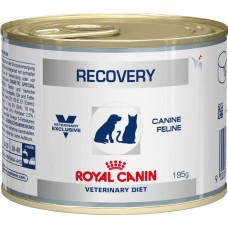 Royal Canin recovery консервы для собак и кошек при анорексии либо в восстановительный период после болезни 0,195 кг.