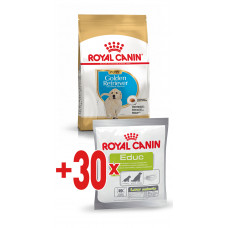 Royal Canin Golden Retriever (золотистый ретривер) Junior корм для щенков до 15 мес 12 кг.