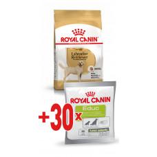 Royal Canin labrador Adult корм для собак (лабрадор-ретривер) от 15 месяцев 12 кг.