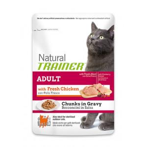 Trainer Natural Adult сухой корм для взрослых кошек с курицей 0,3 кг