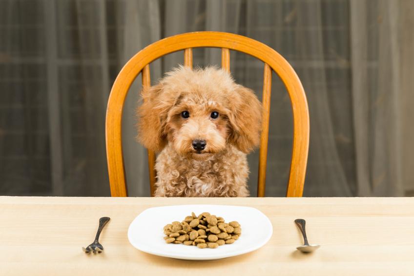 Классы корма для животных